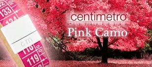 Il Centimetro: de blikvanger van 2013