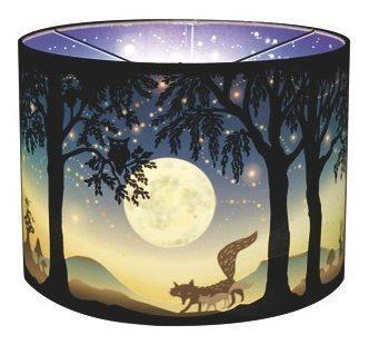 Volle maan wonderlampen bij Hartendief