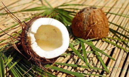 Waarom is kokosolie goed voor je?