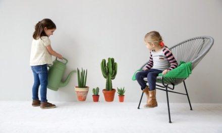 Cactussen op de muur