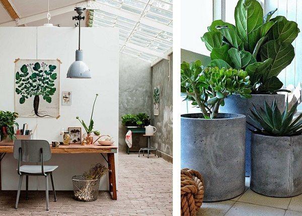 Urban Botanic Style