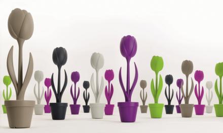 Famozo brengt nieuwe designcollectie voor binnen én buiten