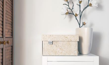Opruimen wordt een feest met de nieuwe Dutch Design Box