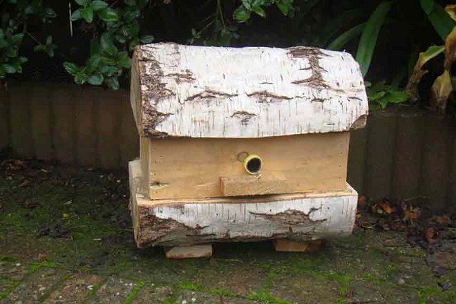 Een insectenhotel: mooi voor je tuin en fijn voor de insecten