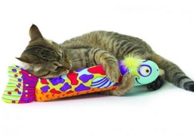 Laat je kat luieren en lekker spelen!