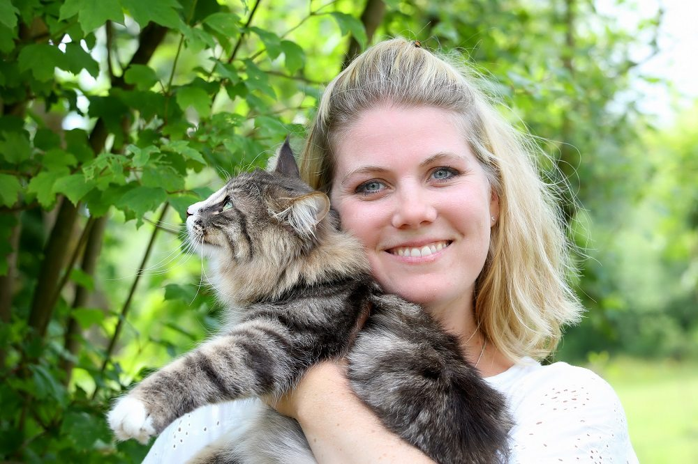 Gedragstherapie voor katten